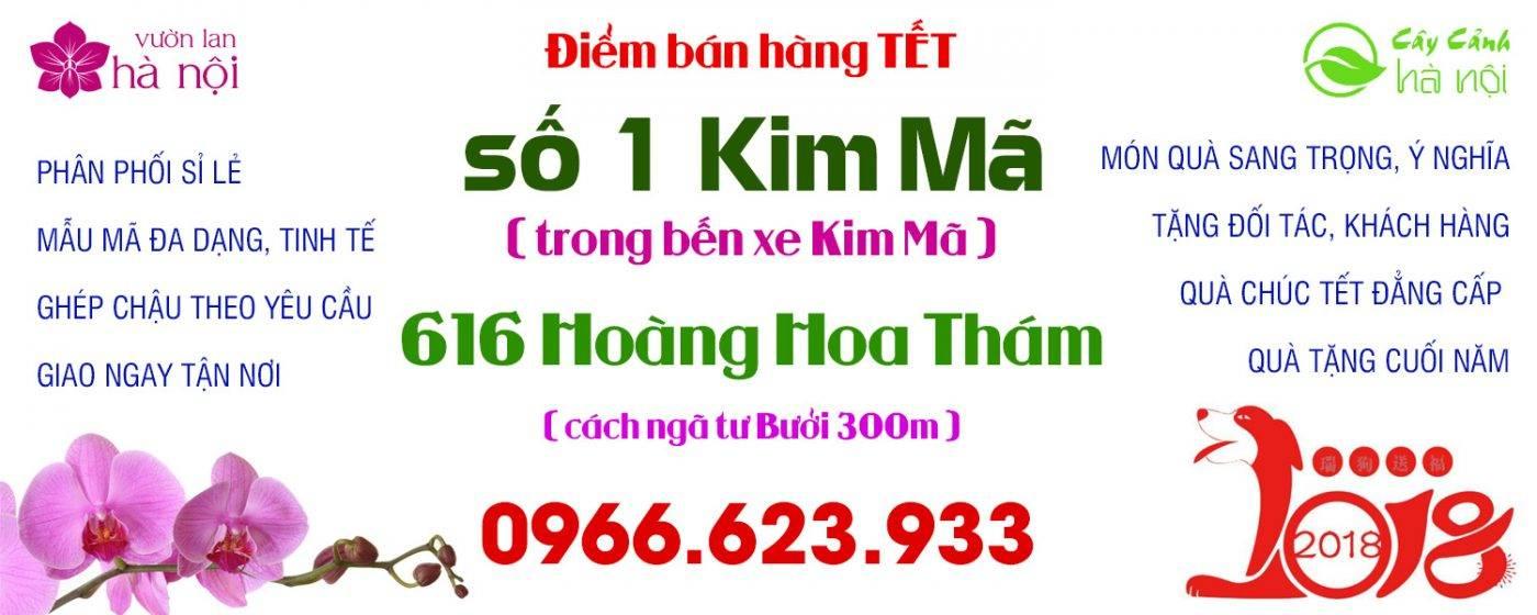 sieuthihoalan-1-1400x560 Grid Style 1